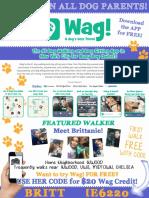 WAG! Ad