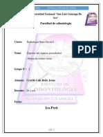 Radiologia Mono 1 Oficial Rx