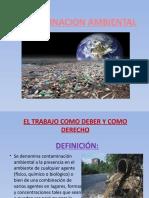 Contam Ambiental Tarea de Colegio