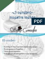 El Cerebro- Nuestra Mente