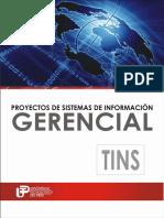 Proyectos de Sistemas de Informacion Gerencial