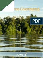 DIAGNOSTICO-LLANOS.pdf