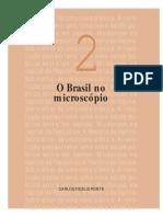 O Brasil no microscópio.pdf