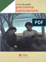 Apacuana y Cuaricurian