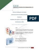 D0 SPSS.pdf