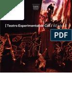 Teatro Experimental de Cali (1)