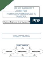 agenteshemotransmisibles-121115224123-phpapp02