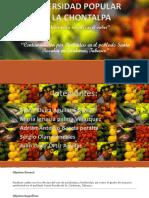 Contaminación por Pesticidas en el poblado Santa (2).pptx