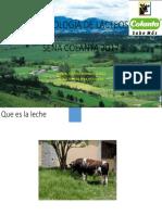TECNOLOGÍA DE LACTEOS.pptx