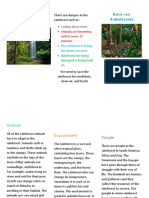 we need to save the rainforest brochure