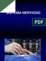 04. Sistema Nervioso