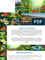 expo-bosques-lagunas-lagos-diapos-final.pptx