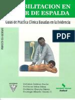 libro_rehabilitacion en dolor de espalda - emb@.pdf