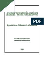 2005-Planificacion-Algebra y Geometria Analitica