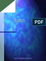 stomach.pdf