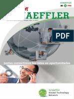 conexión schaeffler 022013