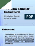 59814320 Los Terminos de La Terapia Estructural