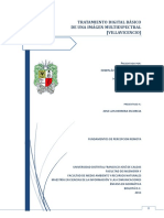 Tratamiento_Digital_Basico_de_una_Imagen.pdf