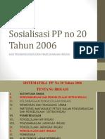 Sosia;Isasi PP 20 Tahun 2006