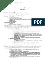6 Plan de Recapitulare Pentru Evaluarea Initiala
