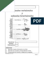 Animales vertebrados e invertebrados.pdf