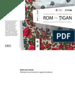 ro_124_Rom sau tigan.pdf