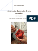 Escola Secundária Do Lumiar.pdf Heart
