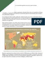 Dos Experimentos Confirman Que Los Insecticidas Agrícolas Son Nocivos Para Las Abejas