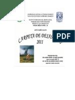 Carpeta de Desastres UMR 113 2011