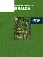 25_Sinaloa_2015_SIN (2)