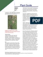 cs_prvi.pdf