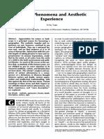 Tuan_Surface Phenomena and Aesthetic Experience_1989