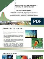 Proyecto López Morillo Salazar