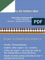 Aula Beterraba Olerica 2016B