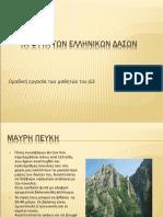 Φυτά Των Ελληνικών Δασών (1)
