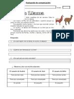 examende1ergrado2013i-131013174111-phpapp01