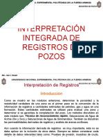 Interpretacion Integrada de Registros de Pozos