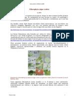 Chlorophyta.pdf