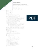 Estructura Plan de Negocio
