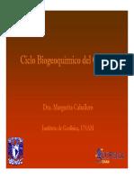 ciclocarbono.pdf