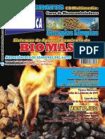 Energias Limpias BIOMASA.pdf
