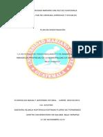 PLAN DE TESIS FINAl 08-08-17 FLORY.docx