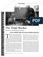 Triple Burden- Frenk 2011