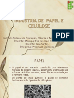 Indústria de Celulose e Papel - Monique