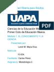 290977158-Metodologia-2-Modulo-1.docx