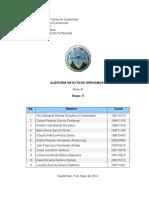 t47 Auditoria Activos Intangibles