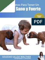 10SecretosBoxer.pdf