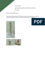 Usos Del Bambú Purificador de Agua