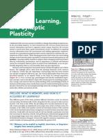 plasticity pon_ch10_final.pdf