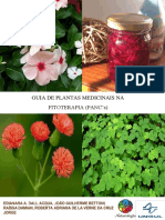 Guia de Plantas Medicinais Na Fitoterapia Pancs